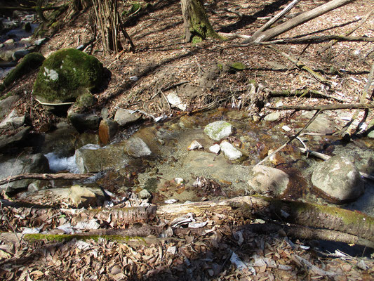 集落沿いに山麓を巻くようになると沢の水量も多くなる 河床は花崗岩が砂状になった明るい雰囲気