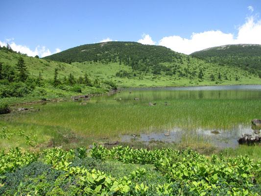 いつ来ても美しい鎌沼 ここにお弁当を食べに来ている地元の人たちもいました