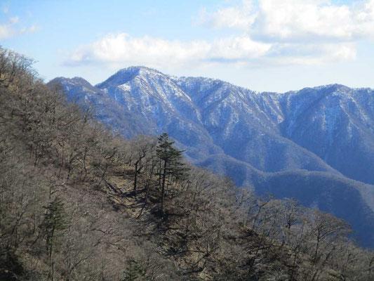 西丹沢の名峰檜洞丸 こちら側から見ると立派です