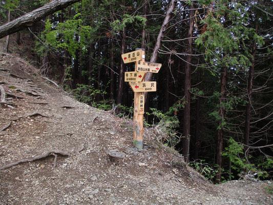 立野峠のきれいな標識 中央沿線の北側からの登りは植林帯の暗いなかからです 向こうから登ってきた人のほとんどは倉岳山に向かう登山者でしょう