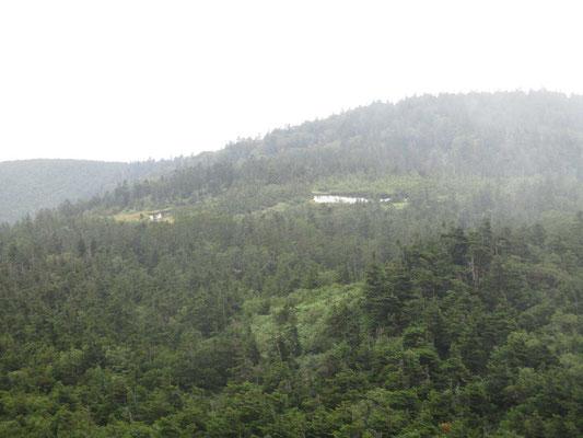 右が蛍池、左が片藤沼 間に登山道が通るがそこからは至仏山と燧ヶ岳が並んで見えるそう…
