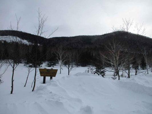 スノーシューで歩き始めた「しらかば峠」 ここは東ヌプカウシヌプリ登山口でもある
