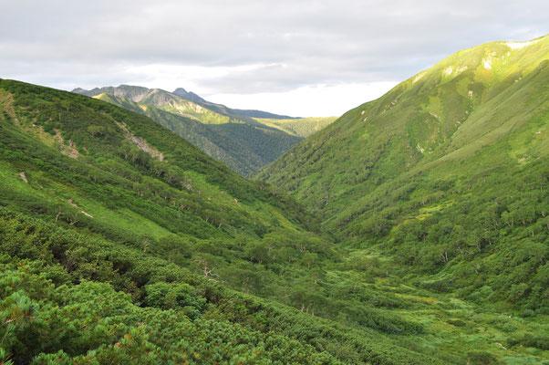 ゆったりした大きな谷 この何処かにクマさんも歩いているのかも…