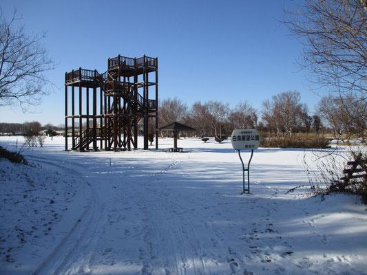 裏手に広がる「白鳥公園」かなり広い公園だった