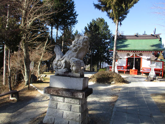 山頂駅付近の八雲神社にご挨拶 ここの狛犬は子どもを抱えている