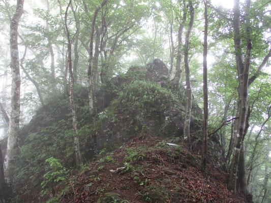 休憩後、出発してまもなく出会った「ウバガ岩」 巻道を外してしまいわざわざ岩の上を乗り越える なかなか存在感のある大岩だった