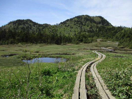 四十八池湿原 誰も居らず まさに楽園