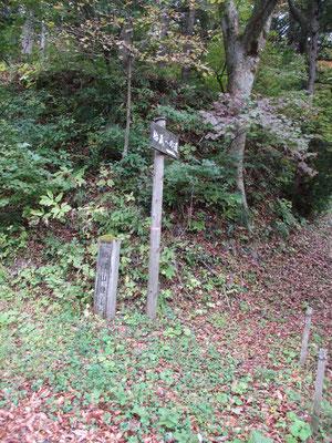 胎蔵山 登山口 細い林道を進み、ここまでやっと辿り着きました