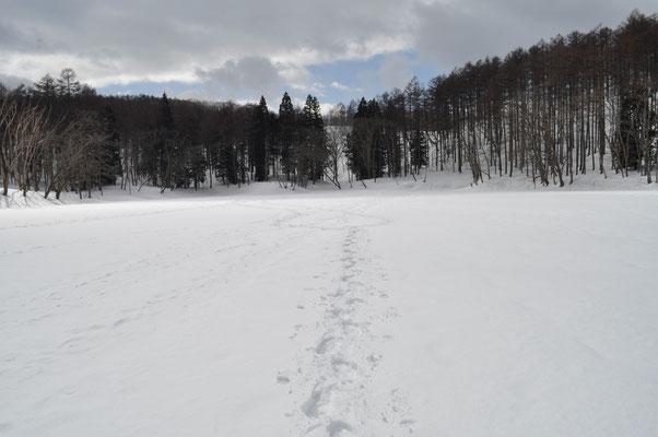 湖上の足跡
