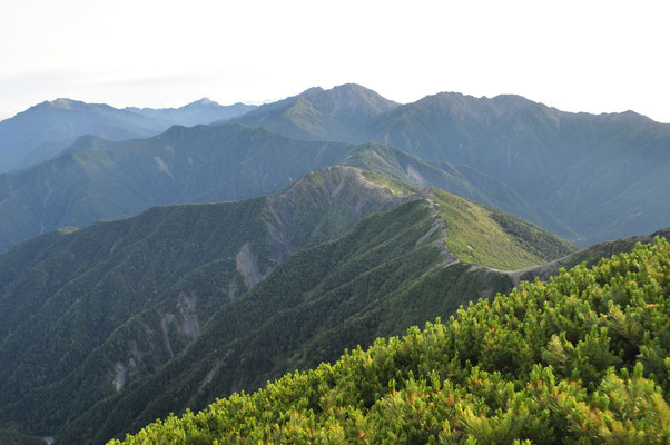 目を移せば南アルプス北部の名峰、白峰三山(間ノ岳、農鳥岳、北岳の頭の部分)や遠くには甲斐駒、仙丈ヶ岳