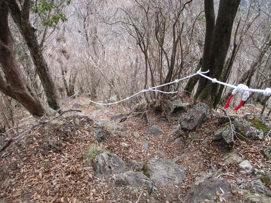 ロープが張られた岩稜 下りでも膝が痛いので後ろ向きにスルスル降りていきます