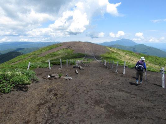 下山路である焼岳に向かう ここ一帯はザレた山で殆どの植物を寄せ付けない が、こうした過酷な状況下でコマクサは美しく花を咲かせる が、まだ花期には早い