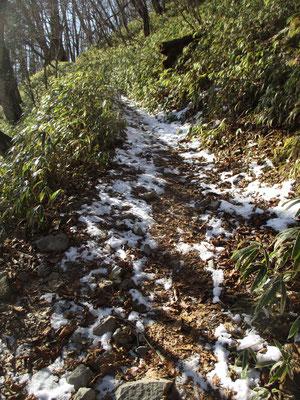 峠近くの登山道は日があたっても気温が低く凍ったまま溶けません 滑るので要注意