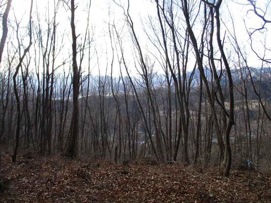 木立の向こうには境川沿いの集落と遠くには扇山など中央線沿線の山が見える