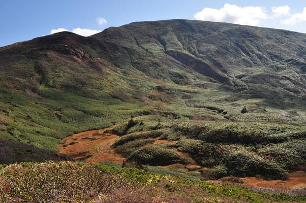 奥に見えるのが大きな山容の笹森山 湿原を抱く山は東北特有、何とも言えない美しさです