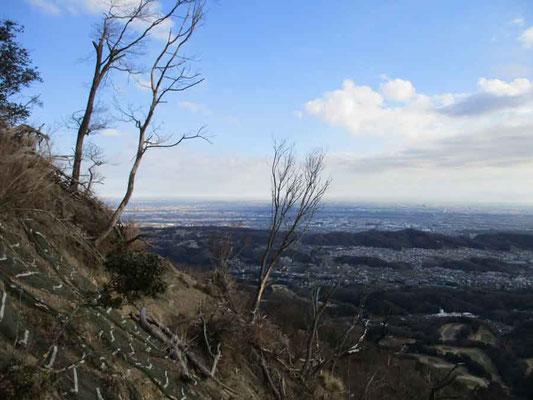 発句石から東京方面を望む 以前は立木が邪魔をしていましたが、今では枯れ木となってしまい見通しのいいこと!