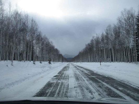 三国峠に向かう国道273 天気が良ければ遠近法焦点の奥に真っ白に連なる石狩連山が見えるはず