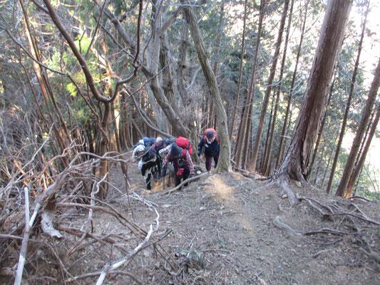 華厳山に向けて最後の急登 大気も冷たく風もあったので、登りと言えどもかなり身体は冷えてきています