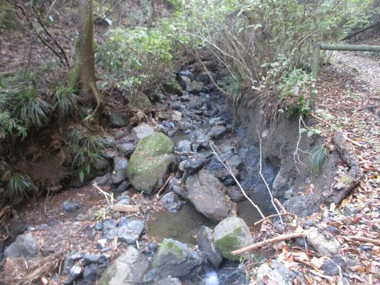 下の沢筋も相当荒れていた 本来の沢の形が変わるほど多くの水が出たらしく、沢がえぐられている