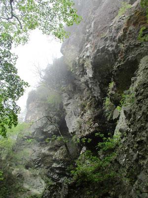 一般登山道ですが、こんな険悪な岩の林立が控え圧倒されます