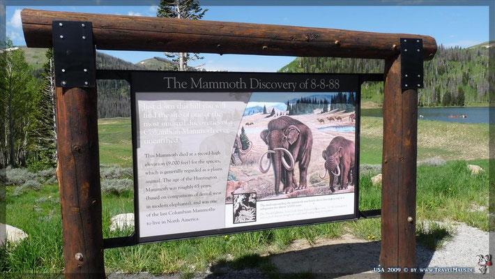 ein Mammoth -Gebiet in unserer Vorzeit