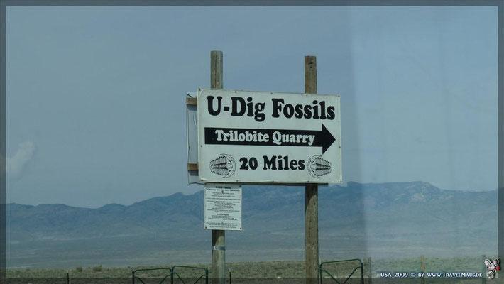U-Dig Fossils (Trilobiten) N39°08´22.7´´ W 113°05´17.8´´ Abzweig 20 Meilen