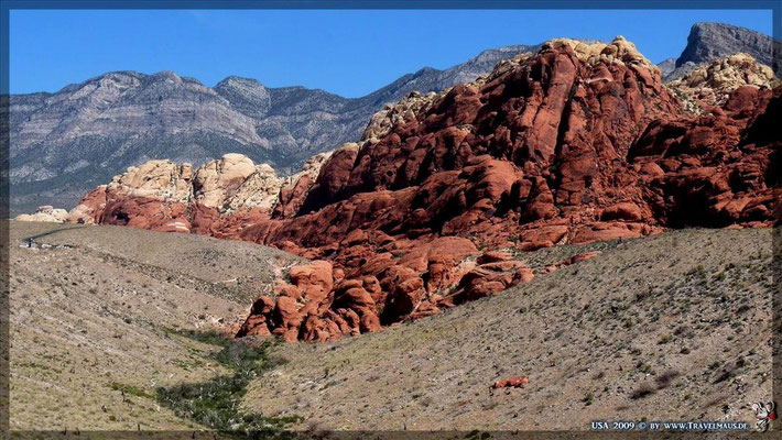 Red Rock Canyon Loop - Visitor Center N 36°07´56.0´´ W 115° 25´22.2´´