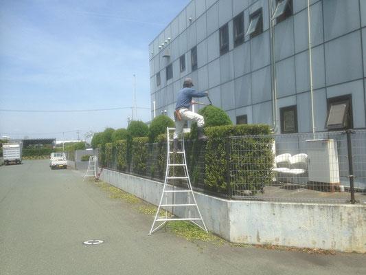 工場緑化管理