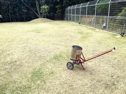 芝生、肥料散布
