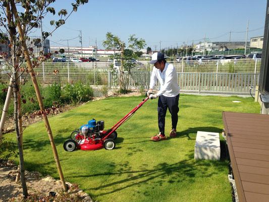芝刈り作業(2)