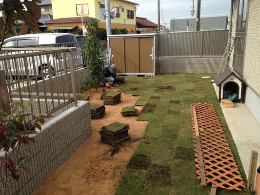 一般住宅、芝張り作業