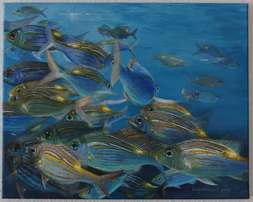 """""""Tropische Fische"""" Acrylfarbe auf Leinwand (Keilrahmen) 40x50 cm"""