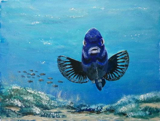 """Fisch"" Acrylfarbe auf Acrylpapier 30x40 cm"