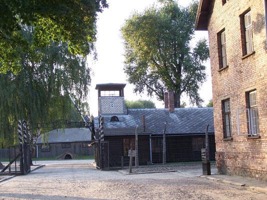 Auschwitz-Birkenau en Pologne