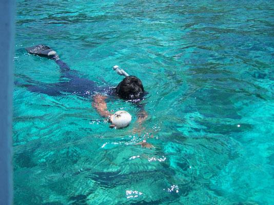 Plongée dans les eaux turquoises de Bali (ici à Menjangan)