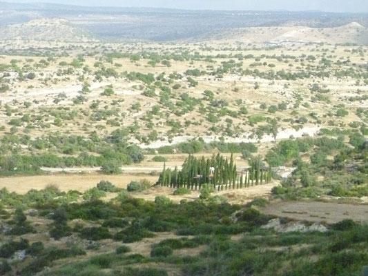 Sur la route de Larnaca