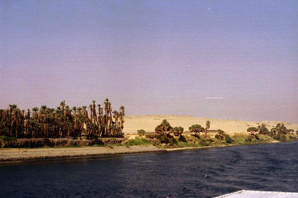 Sur les bords du Nil....