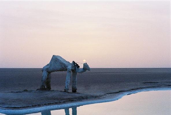 Le désert de sel tunisien