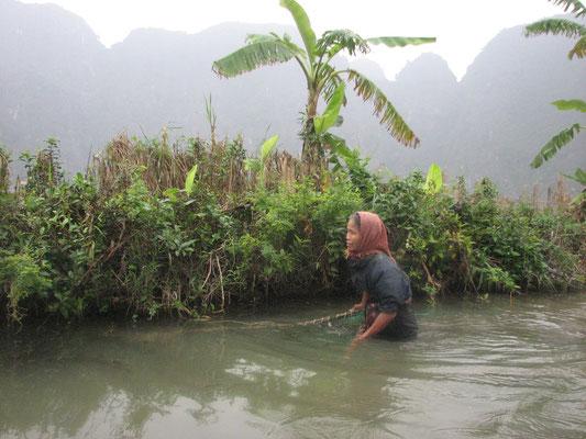 Pêche traditionelle dans la Baie d'Halong terrestre