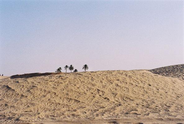Le désert de sable tunisien