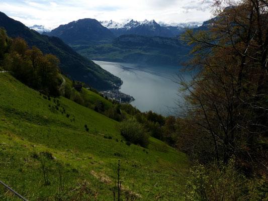 Im Abstieg nach Gersau
