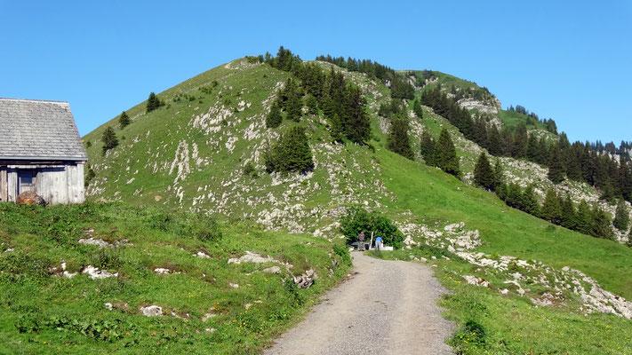 Gulmen-Ostrücken
