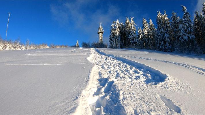 Hochfirstturm - 1192 m