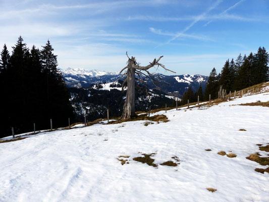 Blick in die Urner Alpen