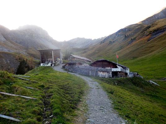 Allmenalp-Bergstation - 1723 M