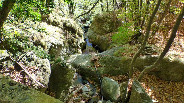 Rio Piumesc
