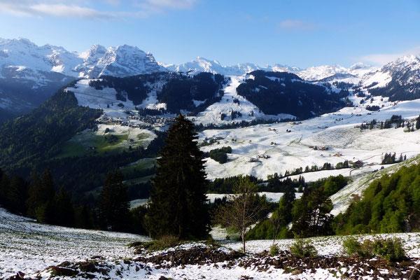 Urner und Berner Alpenpanorama