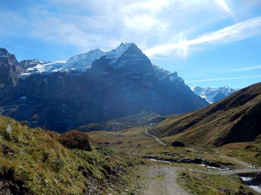 Scheidegg Oberläger  - Grosse Scheidegg