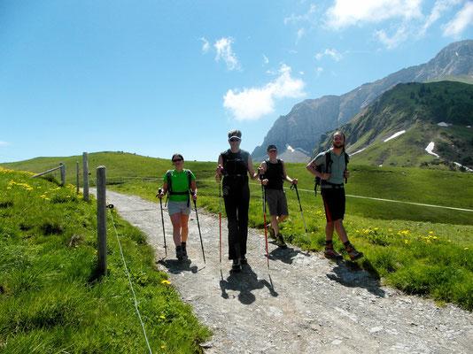 Alpe vor Tritt