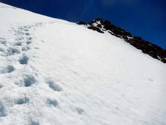 Querung auf dem Gipfelfirnfeld zum Gipfel